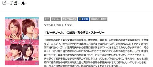 映画 ピーチガール フル動画を無料視聴