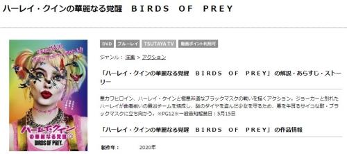 映画 ハーレイクインの華麗なる覚醒 BIRDS OF PREYの無料動画配信とフル動画の無料視聴情報まとめ